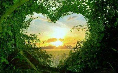 Träff med Hjärtat