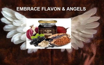 Embrace Flavon & Angels